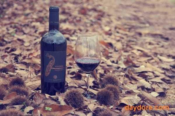 ruou vang 600x400 - Tìm Hiểu Về Rượu Vang Vindoro Negroamaro – Vang Con Công Của Ý