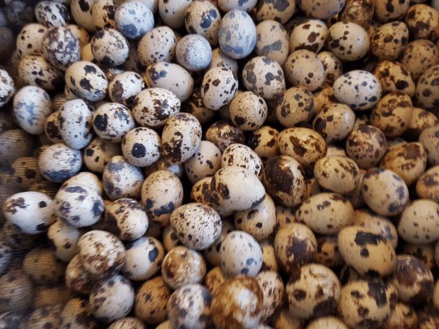 Thực phẩm tốt cho sinh lý nam - Trứng cút